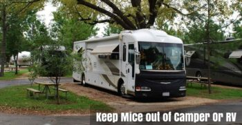 Keep Mice out of Camper Or RV